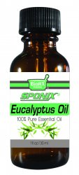 Eucalyptus Essential Oil - 1 OZ